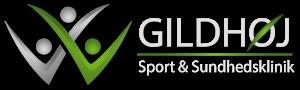nyt-logo-gildsport